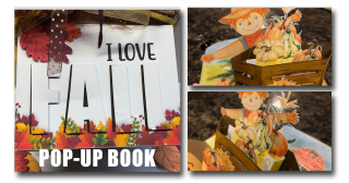 Fall Pop-Up  Book Cover